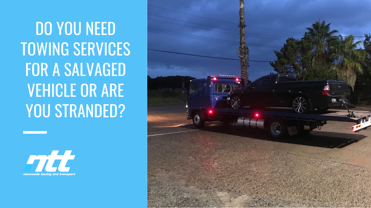 What is Vehicle Salvaging? -